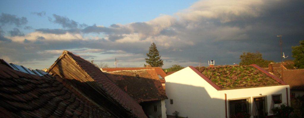 Nízkoenergetický rodinný dom s vegetačnou strechou, hlinenými omietkami a vykurovaný pecou (Skalica)